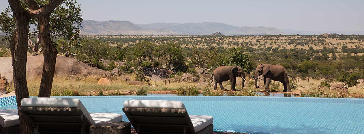Serengeti Four Seasons Safari Lodge Pool view